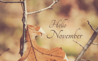 November news and promotions at House of Beauty